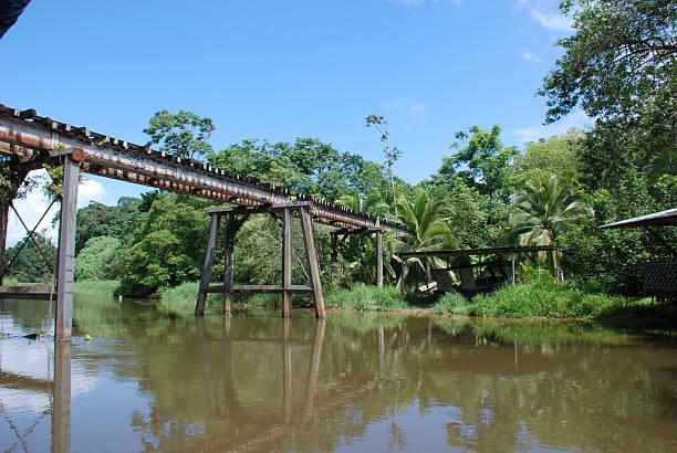 Tortuguero-Kanal Dschungel-River Railroad bridge, Costa Rica – Foto