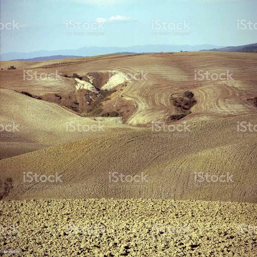 Toscana-ground caribou – Foto