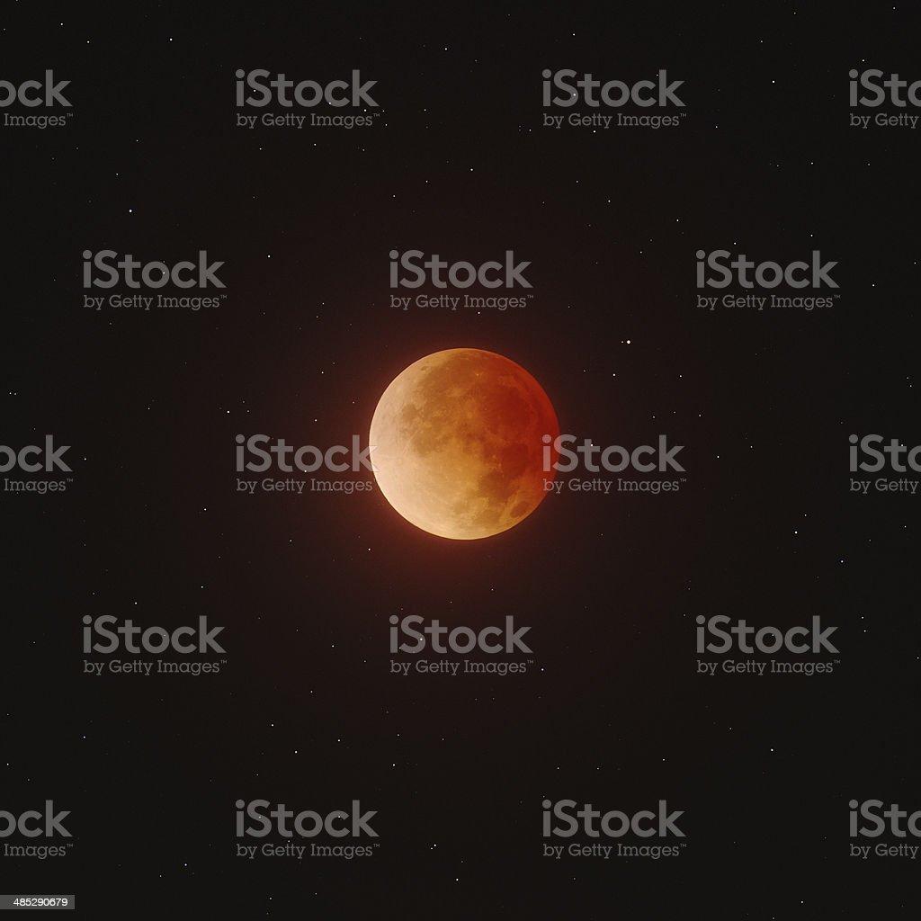 Total Lunar Eclipse foto
