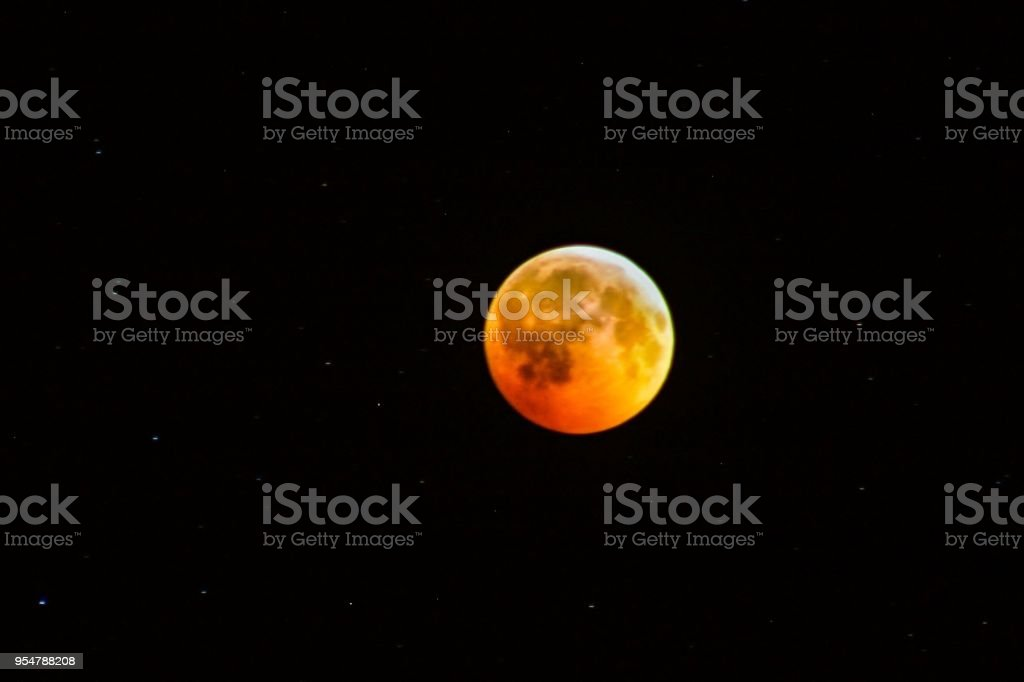 Total Lunar Eclipse – Foto