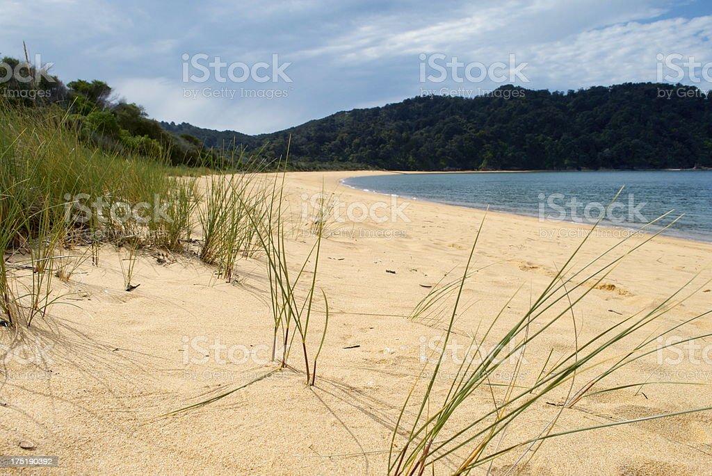 Totaranui Beach, Abel Tasman National Park, New Zealand royalty-free stock photo
