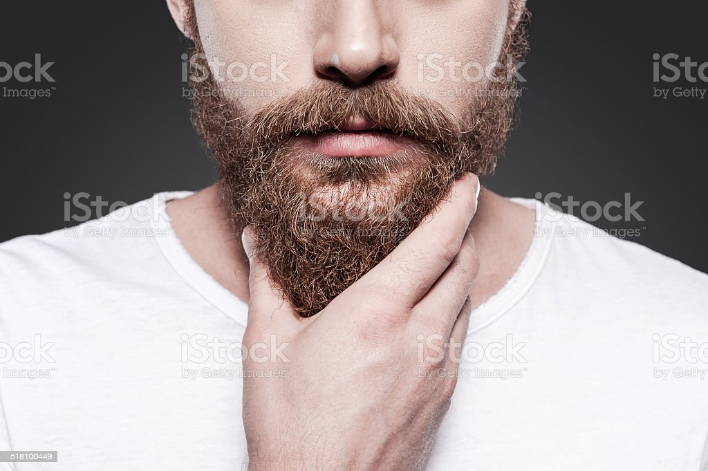 Touching his perfect beard. stock photo
