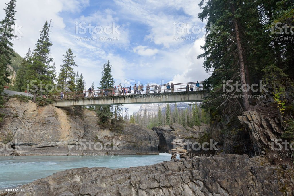 Tour bus visiting landmark and taking photos from a bridge over the bow river stock photo