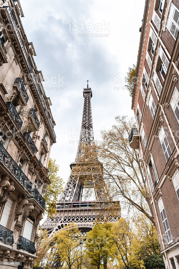 Tour eiffel tower in paris during the fall foto de stock royalty-free
