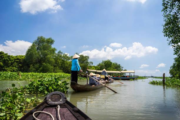 toerisme roeiboot in mekongdelta, vietnam. - vietnam stockfoto's en -beelden