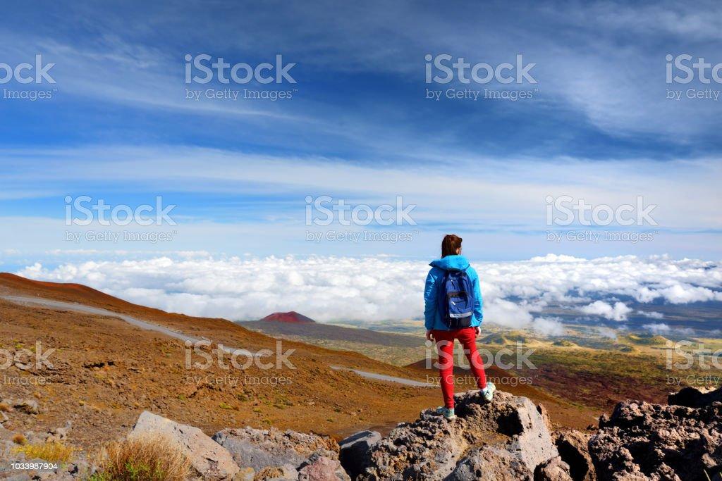 Tourist admiring breathtaking views from the Mauna Kea, a dormant volcano on the island of Hawaii stock photo