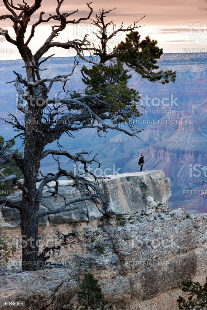 Tourist admiring Mather Point Grand Canyon stock photo