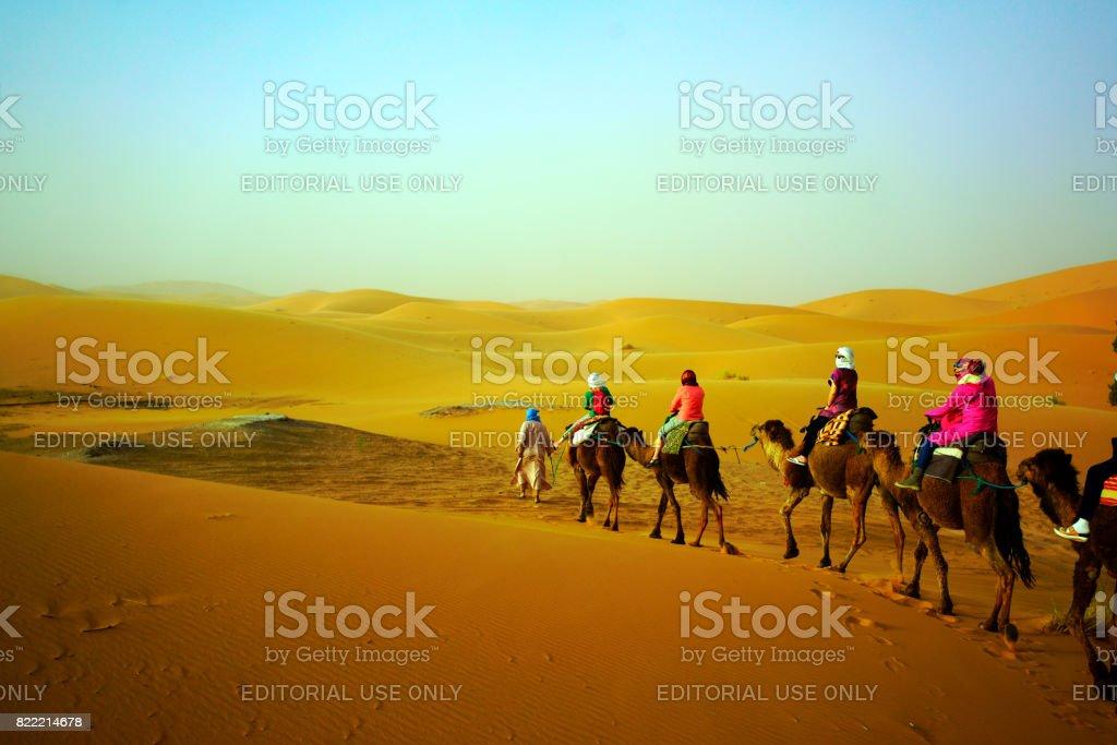 Tourist camel safari in Sahara desert stock photo