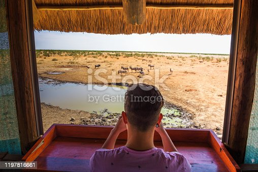Tourist watches and films wildlife with a smartphone from a hide at the Olifantsrus waterhole in Etosha National Park, Namibia