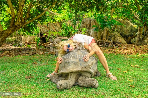 Happy woman enjoying an Aldabra Giant Tortoise. Excited female tourist holding old turtle in turtle sanctuary. Curieuse, Inner Islands, near Praslin, Seychelles, Indian Ocean.