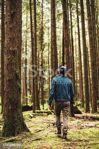 tourist in the forest at washington state