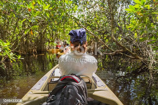 Tourist kayaking in mangrove forest in Everglades, Florida, USA
