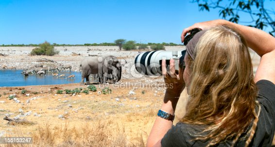 Woman photographer capturing an image at a waterhole in Etosha National Park, Namibia.