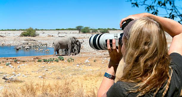 Tourist photographer on safari in africa picture id155153247?b=1&k=6&m=155153247&s=612x612&w=0&h=2k2mr yuagtd650nsi6h o4f9vfvns0ggvwbfpdspis=