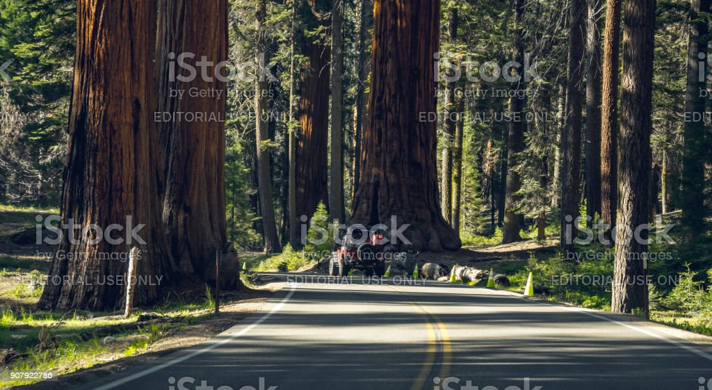 Tourist red car Jeep Wrangler on the highway in Sequoia National Park, California, USA stock photo