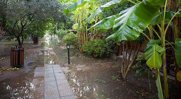 tourist resort nach heftigen regenfälle - mülltonnenhäuschen stock-fotos und bilder