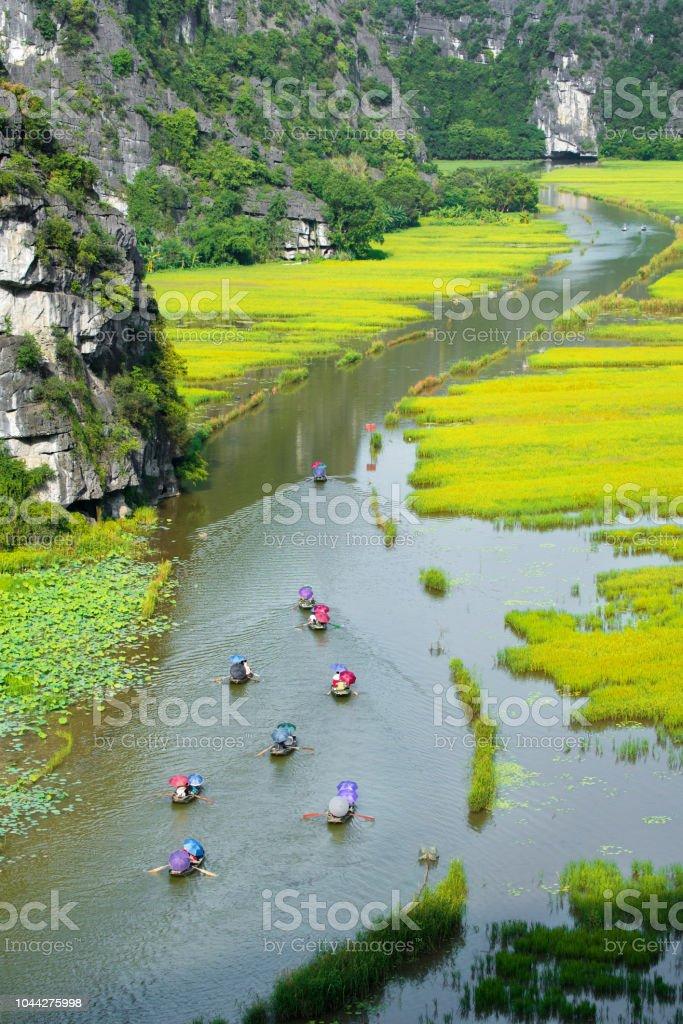 Touristische Bootsfahrt für Reisen Sightseeing Reisfeld am Fluss
