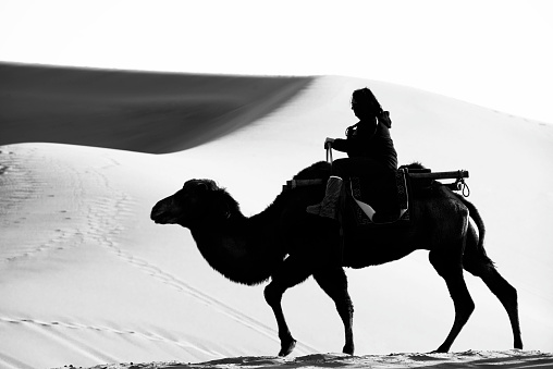 Dunhuang,China-October 13, 2015: A tourist riding the camel pass by the dunes