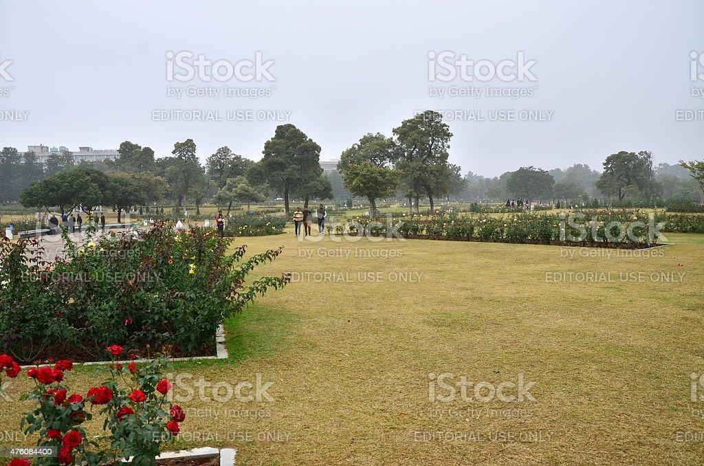 Tourist visit Zakir Hussain Rose Garden in Chandigarh, stock photo