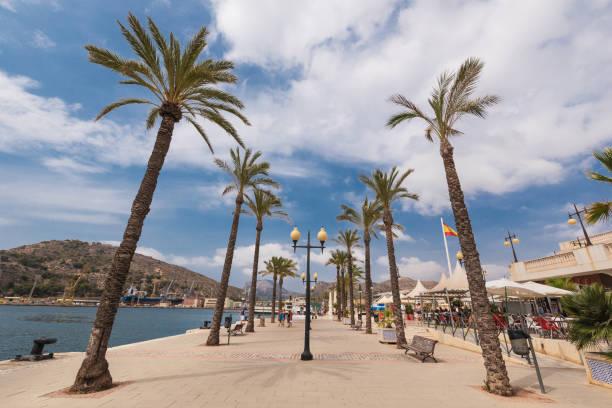 tourist walking in marina of cartagena, murcia, spain. - cartagena museum stock photos and pictures