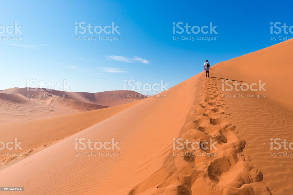 Tourist walking on the scenic dunes of Sossusvlei, Namib desert, Namib Naukluft National Park, Namibia. Afternoon light. Adventure and exploration in Africa. stock photo