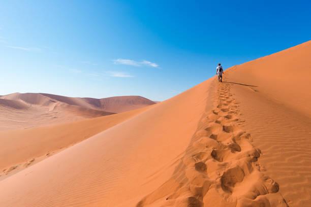 touristen zu fuß auf den malerischen dünen von sossusvlei, namib-wüste namib-naukluft-nationalpark, namibia. am nachmittag leichte. abenteuer und entdeckungen in afrika. - namib wüste stock-fotos und bilder