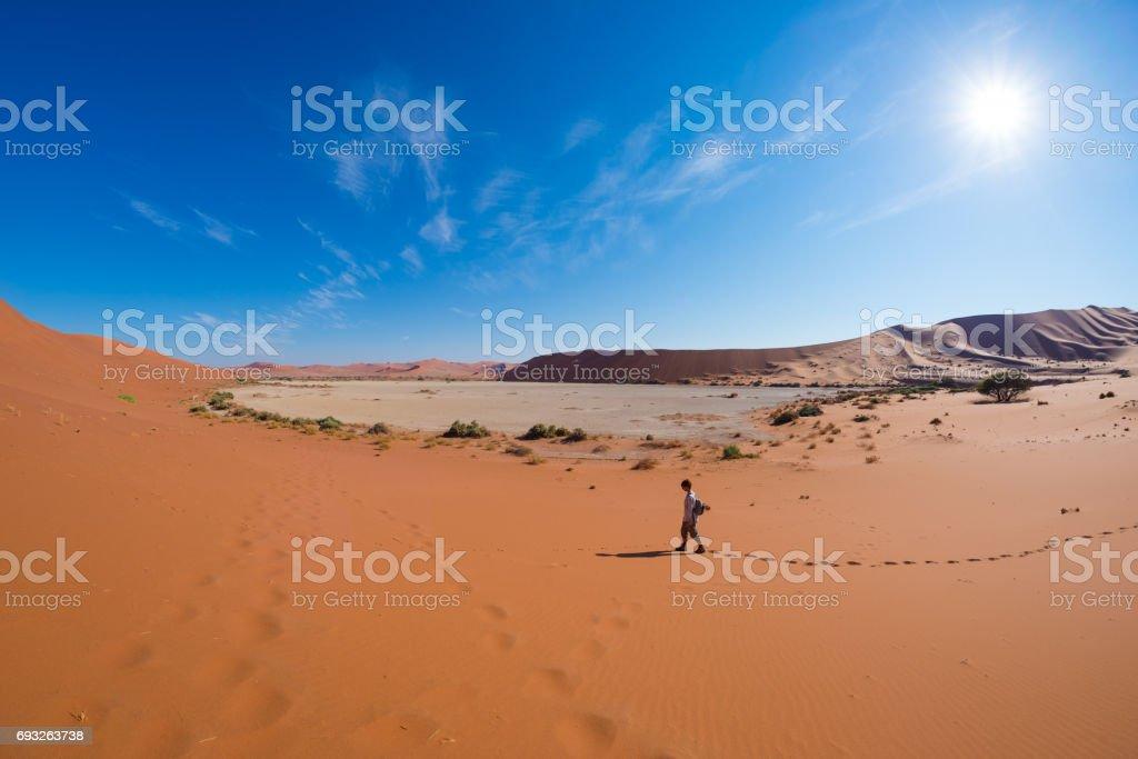 Tourist walking on the scenic dunes of Sossusvlei, Namib desert, Namib Naukluft National Park, Namibia. Adventure and exploration in Africa. stock photo