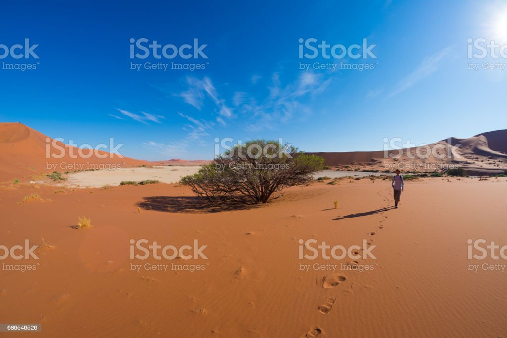 Tourist walking on the scenic dunes of Sossusvlei royalty free stockfoto