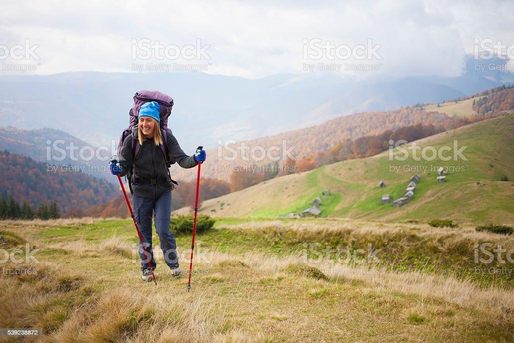 Turista con una mochila es un sendero en el bosque. foto de stock libre de derechos