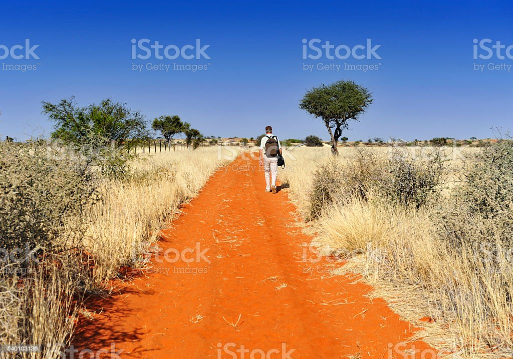 Tourist  with backpack walking in Kalahari desert,Namibia stock photo
