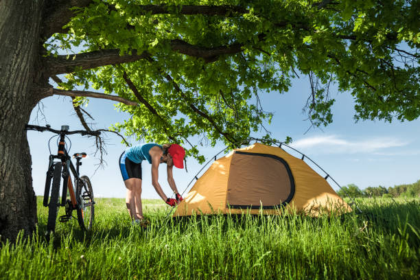 Tourist with tent Young lady sets up a tent on a meadow with green grass under tree female biker resting stock pictures, royalty-free photos & images