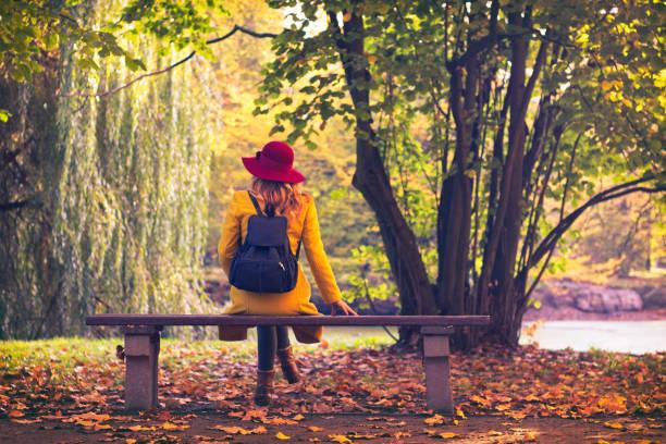 turist kvinna sitter på bänken i offentlig park på hösten. - bench bildbanksfoton och bilder