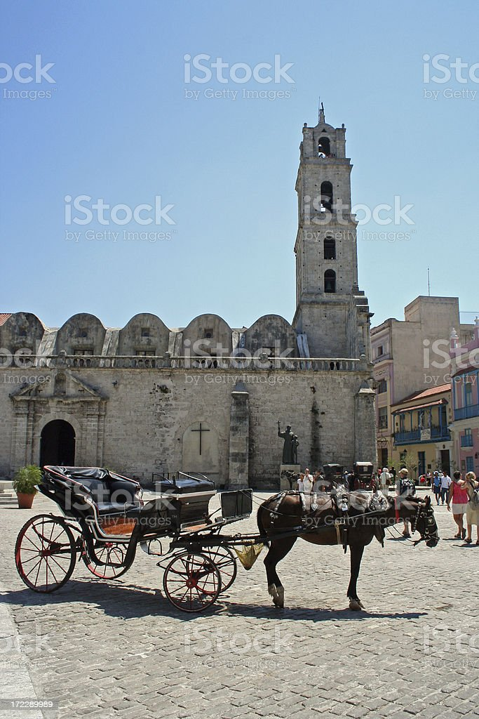 touristic horse royalty-free stock photo