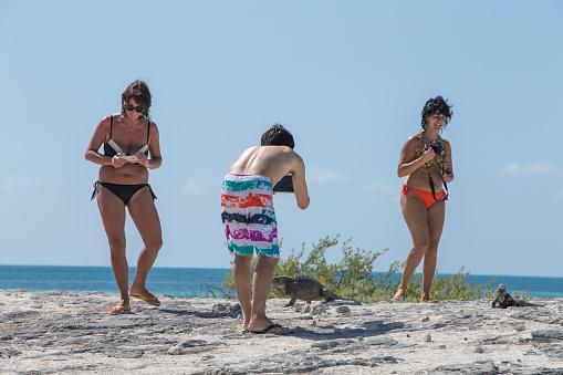 Cayo Largo, Cuba-January 26, 2017:Three tourists is watching iguana on a small island at Cayo Largo, Cuba, Latin America, Summer.