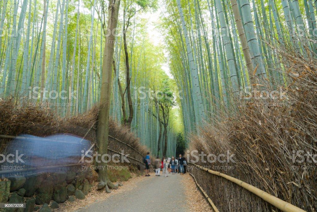 Tourists at Arashiyama Bamboo Forest, Kyoto, Japan - foto stock