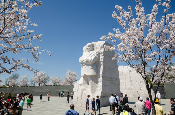 Tourists crowds gather around the Martin Luther King Jr. Memorial Washington, DC - April 4, 2018: Tourists crowds gather around the Martin Luther King Jr. Memorial during Cherry Blossom Festival to pay respects and view the monuments martin luther king jr stock pictures, royalty-free photos & images