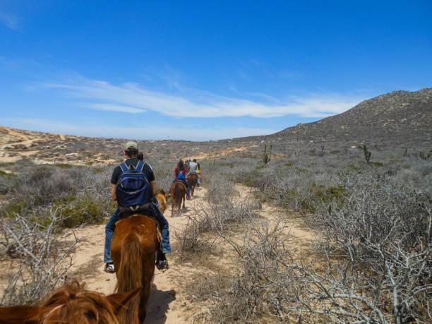 Touristen reiten am Strand in Cabo San Lucas, Baja California, Mexiko, 2019 – Foto