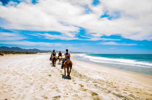 Touristen reiten am Strand in Cabo San Lucas, Baja California. – Foto