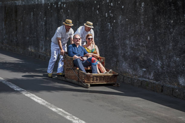 Tourists in a sleigh stock photo