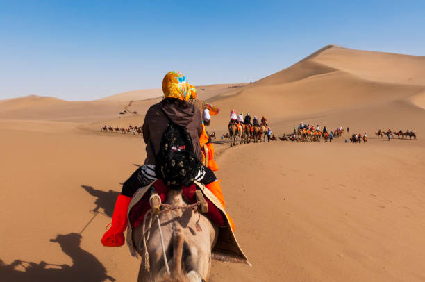 Tourists on a camel caravan in the dunes around the city of Dunhuang, in the ancient Silk Road, in China. Dunhuang, China - August 8, 2012: Tourists on a camel caravan in the dunes around the city of Dunhuang, in the ancient Silk Road, in China. silk road stock pictures, royalty-free photos & images