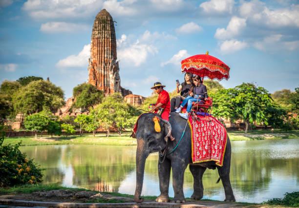 ayutthaya, tayland bir fil binmek tur turistler - ayutthaya bölgesi stok fotoğraflar ve resimler
