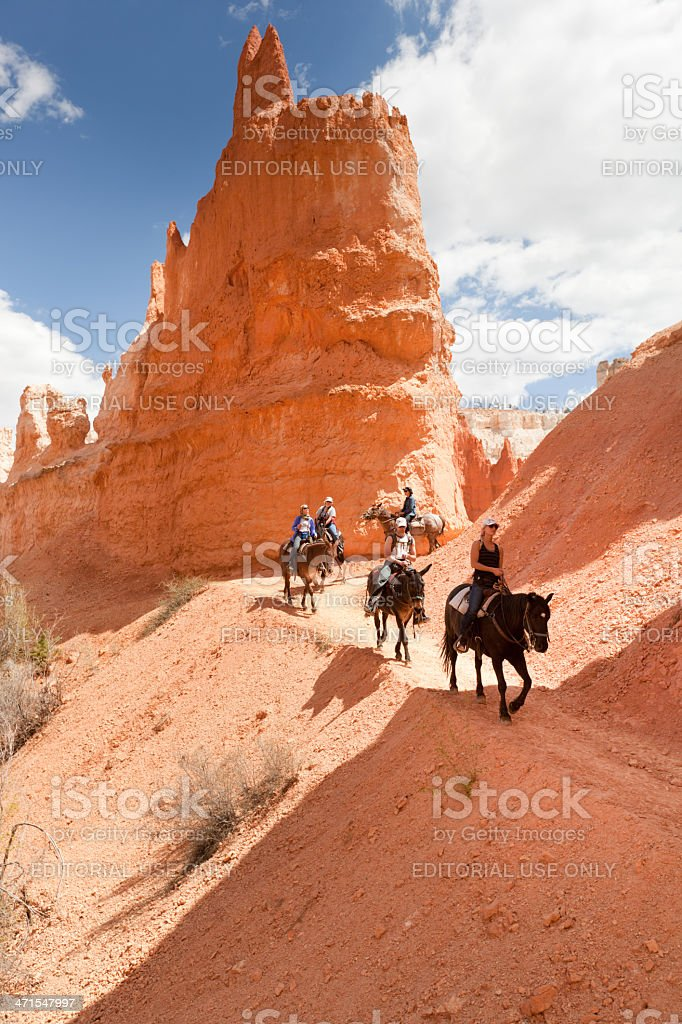 Touristen auf Pferd Trail im Bryce Canyon National Park – Foto