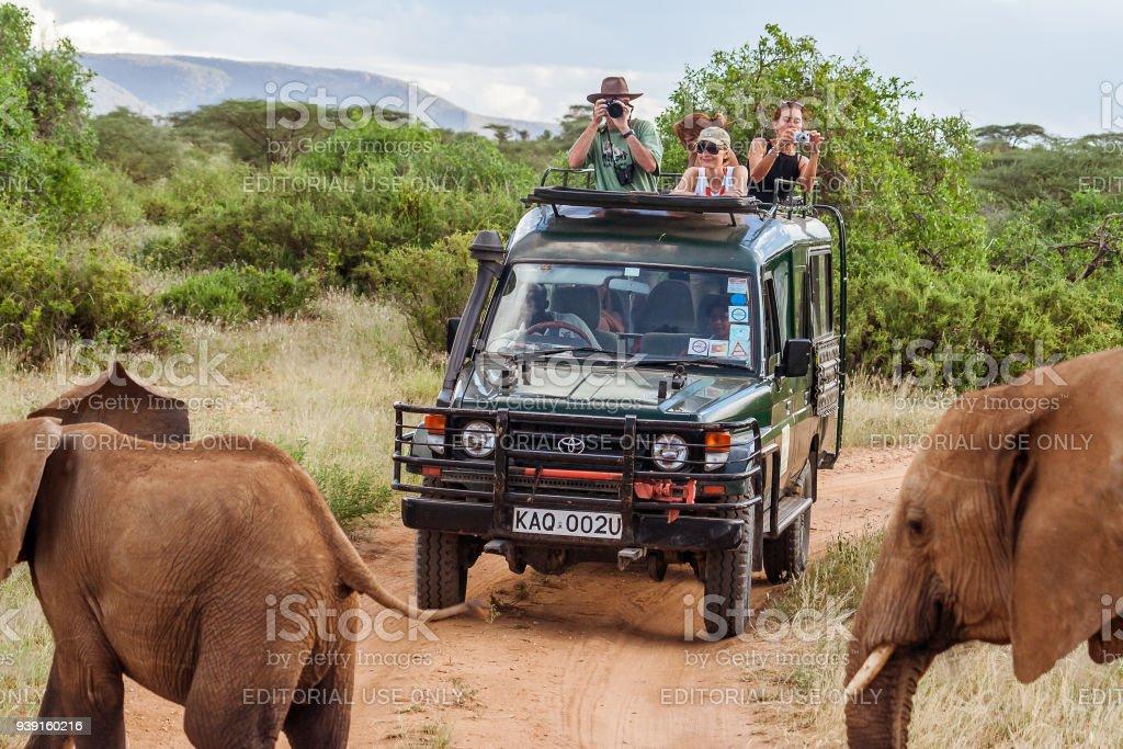Tourists on safari game drive stock photo
