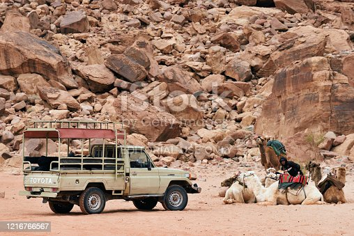 Wadi Rum Village, Jordan - February 19, 2020. Tourists pickup truck and camels for a guided tour in Wadi Rum desert.