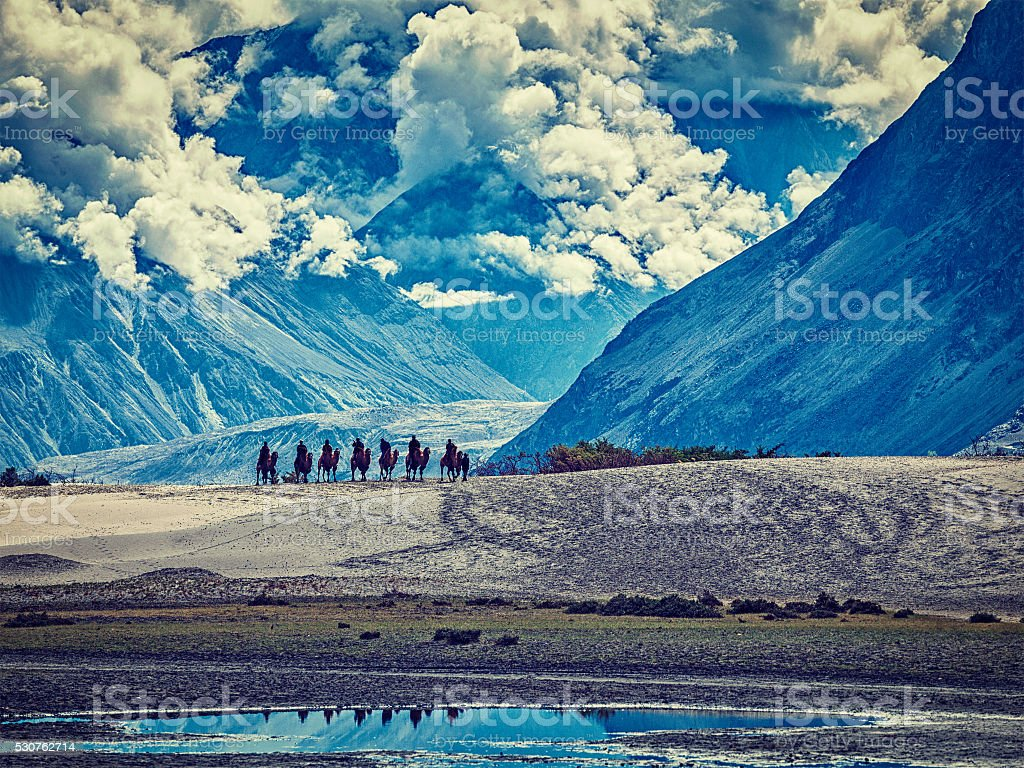 Tourists riding camels in Nubra valley in Himalayas, Ladakh stock photo