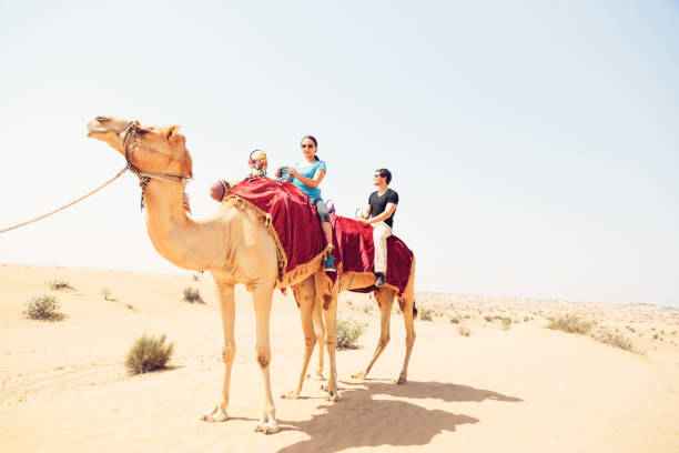 tourists riding through the desert - deve stok fotoğraflar ve resimler