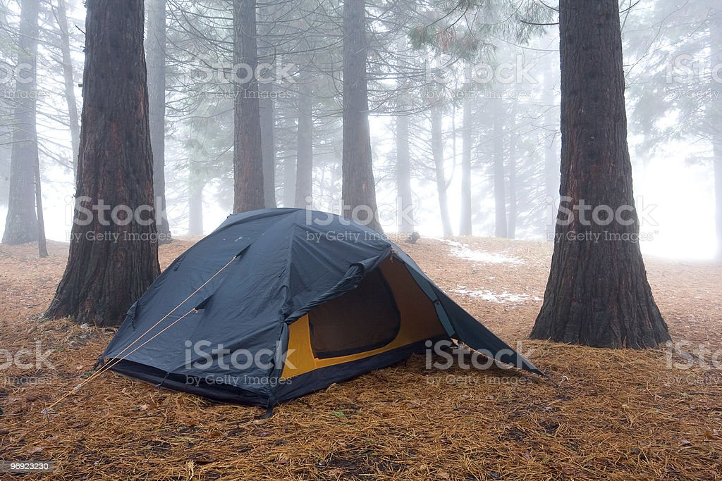 tourists tent in misty forest royalty-free stock photo