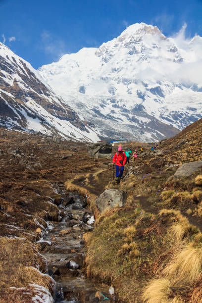 Tourists trekking in Himalaya Annapurna basecamp mountain trail in Nepal stock photo