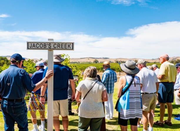 Tourists visiting Jacobs creek vineyards Barossa valley Australia. stock photo