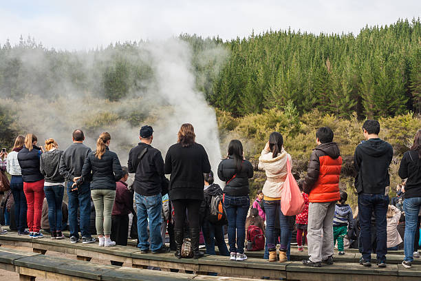 tourists watching eruption of Lady Knox geyser Rotorua, New Zealand - June 7, 2013: Tourists watching eruption of Lady Knox geyser in Rotorua, New Zealand whakarewarewa stock pictures, royalty-free photos & images